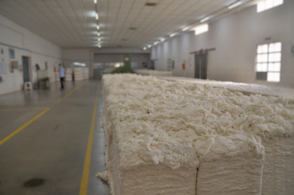 prima curatare a balotilor de fibra de bumbac organic